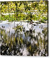 August Reflections Acrylic Print