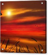 August Sunset Acrylic Print by Tom York Images