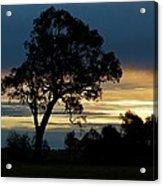 Aussie Silhouette Acrylic Print