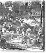 Australian Gold Rush, 1851 Acrylic Print