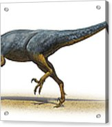 Austroraptor Cabazai, A Prehistoric Era Acrylic Print