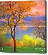 Autum Morning Acrylic Print