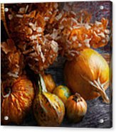 Autumn - Gourd - Still Life With Gourds Acrylic Print by Mike Savad