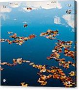 Autumn - 3 Acrylic Print by Okan YILMAZ