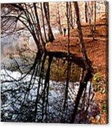Autumn - 4 Acrylic Print by Okan YILMAZ