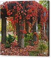 Autumn Arbor In Grants Pass Park Acrylic Print