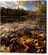 Autumn At Ragged Falls Acrylic Print