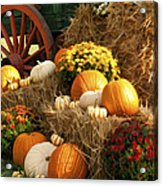 Autumn Bounty Acrylic Print by Kathy Clark