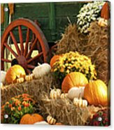 Autumn Bounty Vertical Acrylic Print