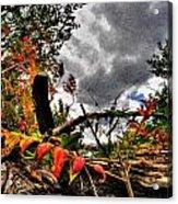 Autumn Breeze Through The Trees    Alt Acrylic Print