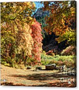 Autumn Campground In Blacksmith Fork Canyon - Utah Acrylic Print