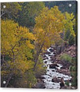 Autumn Canyon Colorado Scenic View Acrylic Print