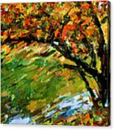 Autumn Colors 2 Acrylic Print