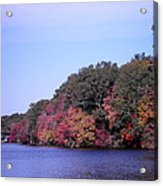 Autumn Colors On The Lake Acrylic Print