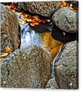 Autumn Colors Reflected In Pool Of Water Acrylic Print