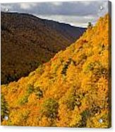 Autumn Colours At North Mountain Acrylic Print