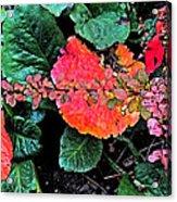 Autumn Composition One Acrylic Print