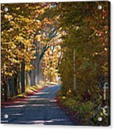 Autumn Country Road - Oil Acrylic Print