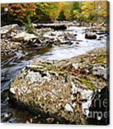 Autumn Cranberry River Acrylic Print