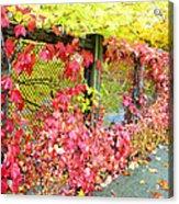 Autumn Decoration Acrylic Print
