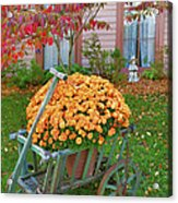 Autumn Display I Acrylic Print
