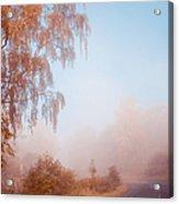Autumn Fairytale. Misty Roads Of Scotland  Acrylic Print