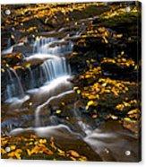 Autumn Falls - 72 Acrylic Print
