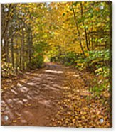 Autumn Foliage On A Country Road Acrylic Print