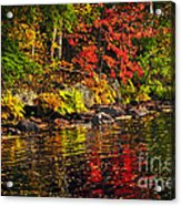 Autumn Forest And River Landscape Acrylic Print