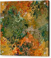 Autumn Forest Tree Tops Abstract Acrylic Print