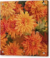 Autumn Garden Impressions Acrylic Print