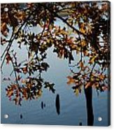 Autumn Gold On The Water Acrylic Print