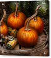 Autumn - Gourd - Pumpkins And Some Other Things  Acrylic Print