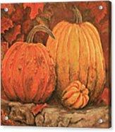 Autumn Harvest Acrylic Print by Peggy McMahan