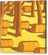 Autumn Haybales Acrylic Print by John  Turner