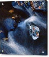 Autumn Ice In A Creek Acrylic Print
