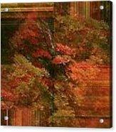 Autumn Illusion Acrylic Print