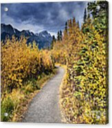 Autumn In Alberta Acrylic Print