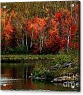 Autumn In Canada 2 Acrylic Print by Marjorie Imbeau