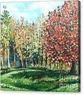 Autumn In My Backyard  Acrylic Print