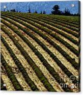Autumn In Provence Acrylic Print