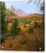 Autumn In Red Rock Canyon Acrylic Print