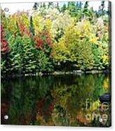 Autumn Jewels 3 Acrylic Print