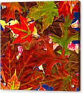 Autumn Leaves Collage Acrylic Print