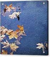 Autumn Leaves Drifting Acrylic Print