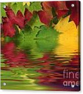 Autumn Leaves In Water With Reflection Acrylic Print