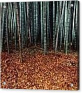 Autumn Leaves Litter The Ground Acrylic Print