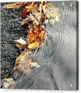 Autumn Leaves Tiny Dam Acrylic Print