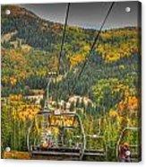 Autumn Lift Acrylic Print