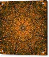 Autumn Mandala 2 Acrylic Print